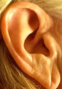 Jan ear