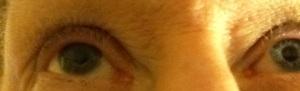 Jan eyes