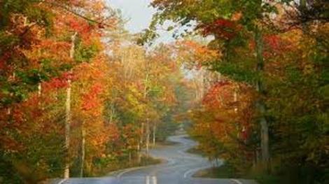 long and winding road bigger
