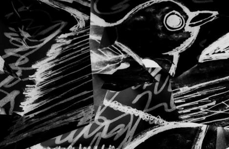 pohymn-blackbird