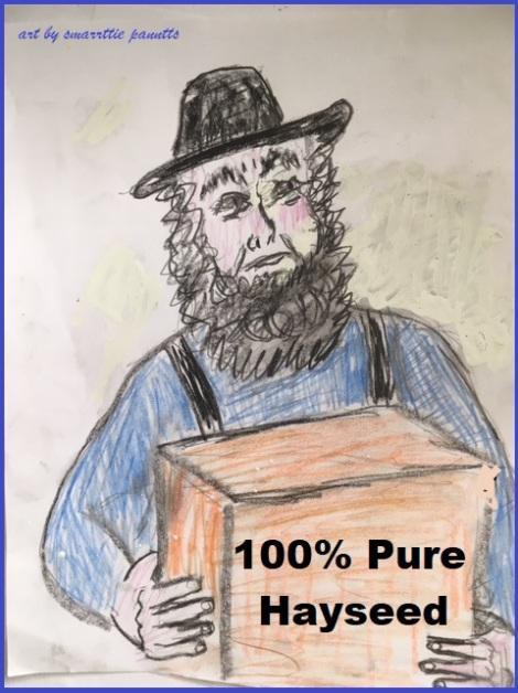 Amish Moving Company